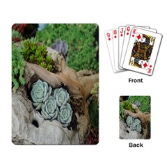 Plant Succulent Plants Flower Wood Playing Card by Nexatart