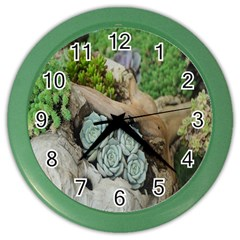 Plant Succulent Plants Flower Wood Color Wall Clocks by Nexatart