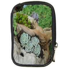 Plant Succulent Plants Flower Wood Compact Camera Cases