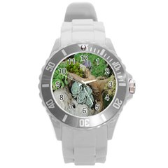 Plant Succulent Plants Flower Wood Round Plastic Sport Watch (l) by Nexatart