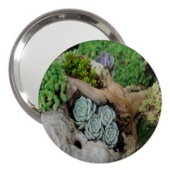 Plant Succulent Plants Flower Wood 3  Handbag Mirrors by Nexatart