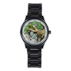 Plant Succulent Plants Flower Wood Stainless Steel Round Watch by Nexatart