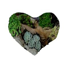Plant Succulent Plants Flower Wood Standard 16  Premium Flano Heart Shape Cushions by Nexatart