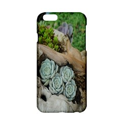 Plant Succulent Plants Flower Wood Apple Iphone 6/6s Hardshell Case by Nexatart