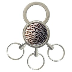 Seed Worn Lines Close Macro 3 Ring Key Chains by Nexatart