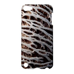 Seed Worn Lines Close Macro Apple Ipod Touch 5 Hardshell Case