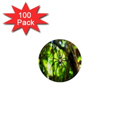 Spider Spiders Web Spider Web 1  Mini Magnets (100 Pack)