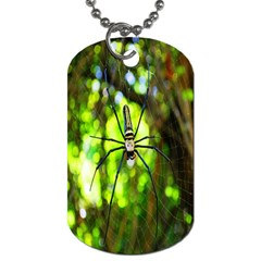 Spider Spiders Web Spider Web Dog Tag (two Sides) by Nexatart