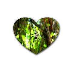 Spider Spiders Web Spider Web Rubber Coaster (heart)  by Nexatart