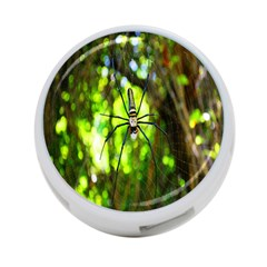 Spider Spiders Web Spider Web 4 Port Usb Hub (one Side) by Nexatart