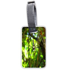 Spider Spiders Web Spider Web Luggage Tags (one Side)