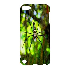 Spider Spiders Web Spider Web Apple Ipod Touch 5 Hardshell Case