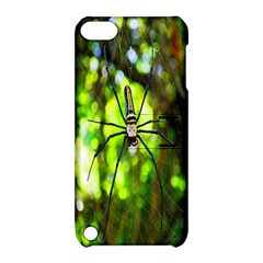 Spider Spiders Web Spider Web Apple Ipod Touch 5 Hardshell Case With Stand by Nexatart