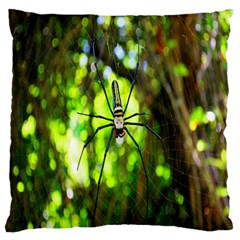 Spider Spiders Web Spider Web Large Flano Cushion Case (one Side)