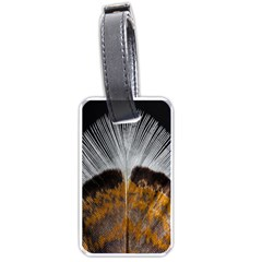 Spring Bird Feather Turkey Feather Luggage Tags (two Sides) by Nexatart