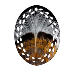 Spring Bird Feather Turkey Feather Ornament (oval Filigree)