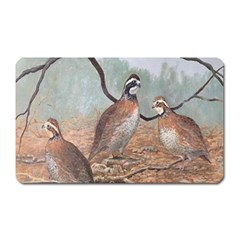 Bob White Quail Magnet (rectangular) by theunrulyartist