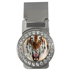 Tiger  Money Clips (cz)  by Nexatart