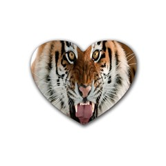 Tiger  Rubber Coaster (heart)  by Nexatart