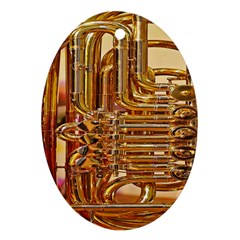 Tuba Valves Pipe Shiny Instrument Music Oval Ornament (two Sides) by Nexatart
