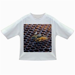 Worker Bees On Honeycomb Infant/toddler T Shirts