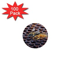 Worker Bees On Honeycomb 1  Mini Buttons (100 Pack)