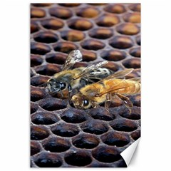 Worker Bees On Honeycomb Canvas 24  X 36