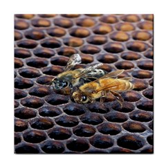 Worker Bees On Honeycomb Face Towel