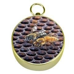 Worker Bees On Honeycomb Gold Compasses