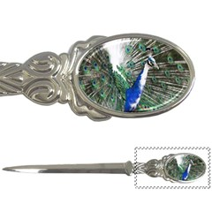 Animal Photography Peacock Bird Letter Openers by Amaryn4rt