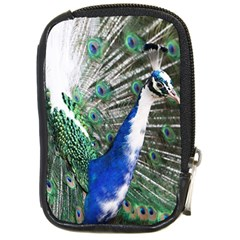 Animal Photography Peacock Bird Compact Camera Cases by Amaryn4rt