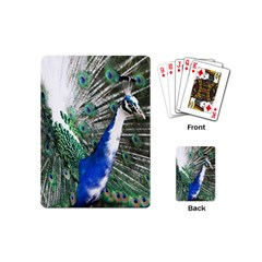 Animal Photography Peacock Bird Playing Cards (mini)  by Amaryn4rt