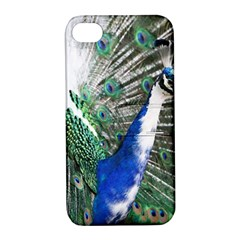 Animal Photography Peacock Bird Apple Iphone 4/4s Hardshell Case With Stand