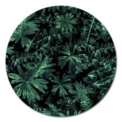 Dark Flora Photo Magnet 5  (round) by dflcprints