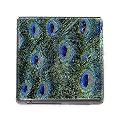 Peacock Feathers Blue Bird Nature Memory Card Reader (square) by Amaryn4rt