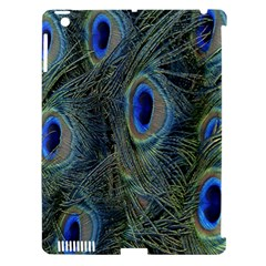 Peacock Feathers Blue Bird Nature Apple Ipad 3/4 Hardshell Case (compatible With Smart Cover) by Amaryn4rt