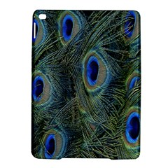 Peacock Feathers Blue Bird Nature Ipad Air 2 Hardshell Cases