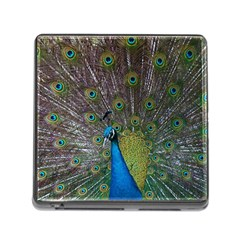 Peacock Feather Beat Rad Blue Memory Card Reader (square) by Amaryn4rt