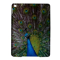 Peacock Feather Beat Rad Blue Ipad Air 2 Hardshell Cases