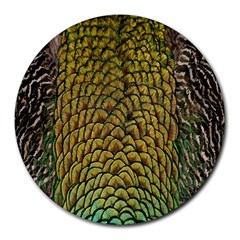 Peacock Bird Feather Gold Blue Brown Round Mousepads by Alisyart