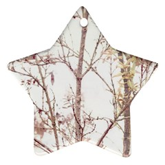 Textured Nature Print Ornament (star) by dflcprints