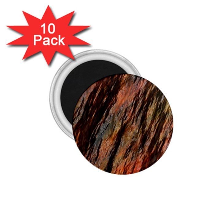 Texture Stone Rock Earth 1.75  Magnets (10 pack)