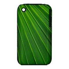 Green Lines Macro Pattern Iphone 3s/3gs by Amaryn4rt