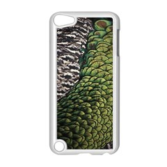 Bird Feathers Green Brown Apple Ipod Touch 5 Case (white) by Alisyart