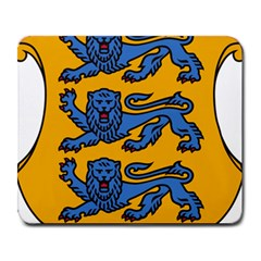 Lesser Arms Of Estonia  Large Mousepads by abbeyz71
