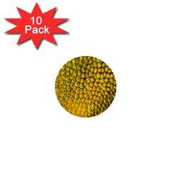 Jack Shell Jack Fruit Close 1  Mini Buttons (10 Pack)  by Amaryn4rt