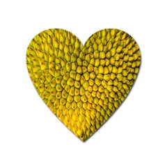 Jack Shell Jack Fruit Close Heart Magnet by Amaryn4rt