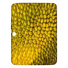 Jack Shell Jack Fruit Close Samsung Galaxy Tab 3 (10 1 ) P5200 Hardshell Case  by Amaryn4rt