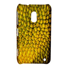 Jack Shell Jack Fruit Close Nokia Lumia 620 by Amaryn4rt