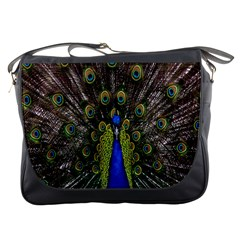 Bird Peacock Display Full Elegant Plumage Messenger Bags by Amaryn4rt